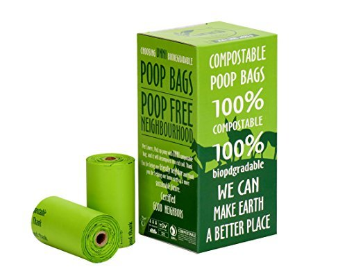 Dog Poop Bags – Most Vital Tips