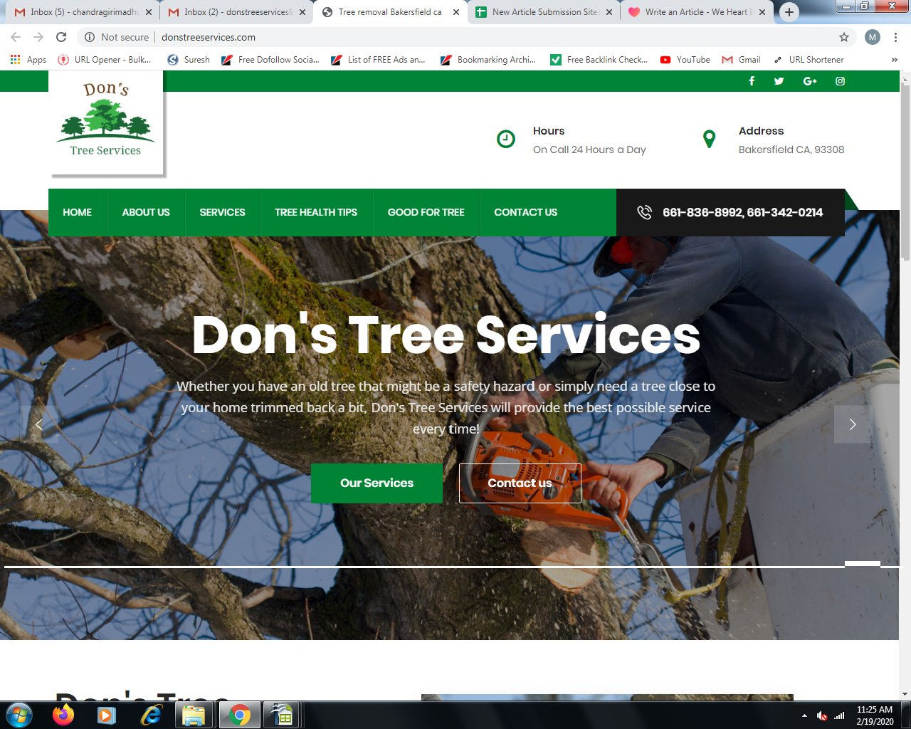 Enhance The Aesthetic Appeal Of Yards With Professional Tree Trimming Services