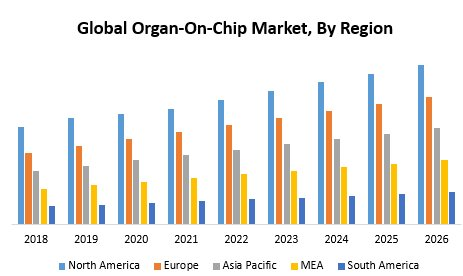 Global Organ-On-Chip Market – Industry Analysis And Forecast (2019-2026)