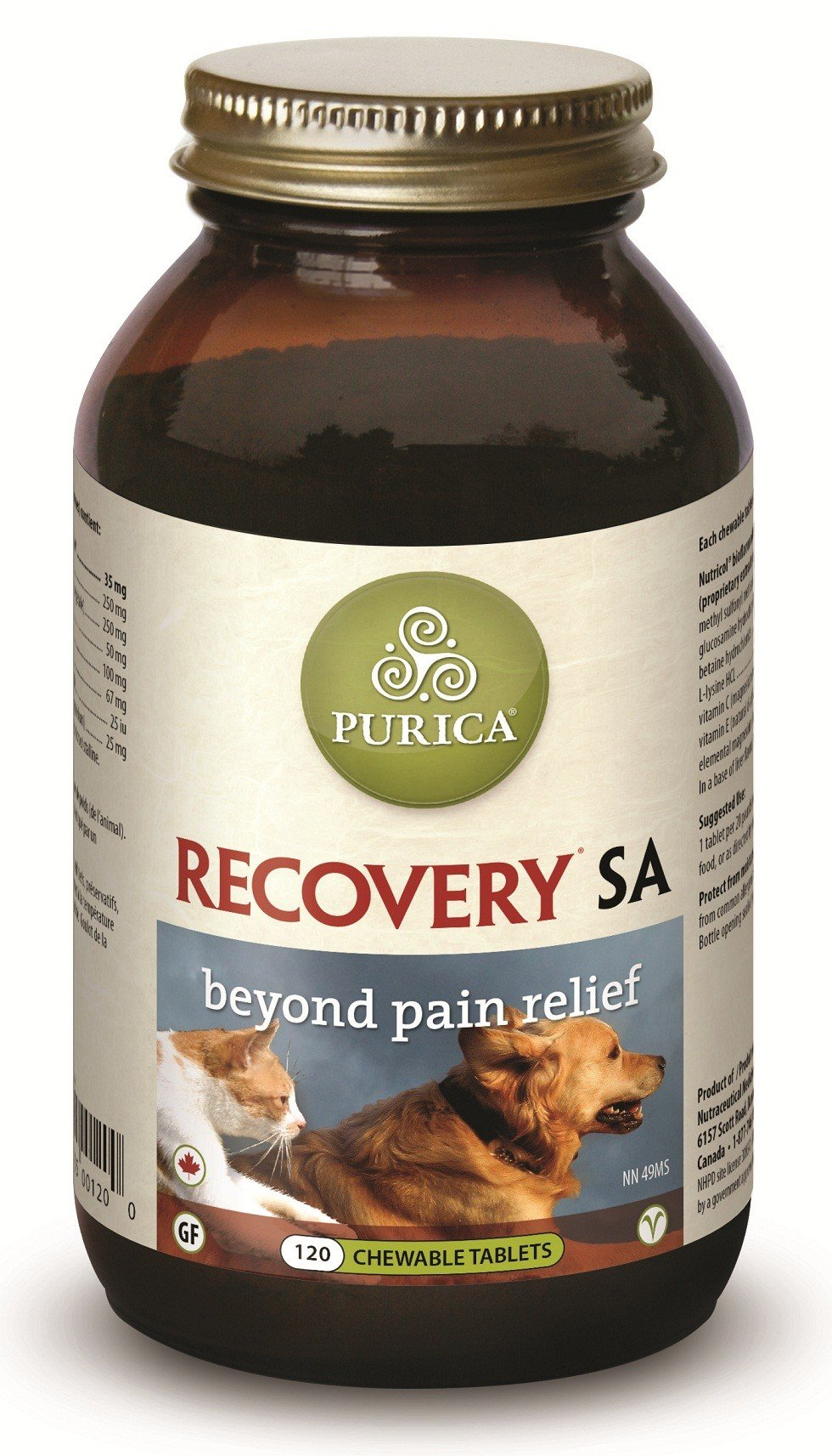 Help Your Dog Recover From Injuries With Purica Recovery SA!