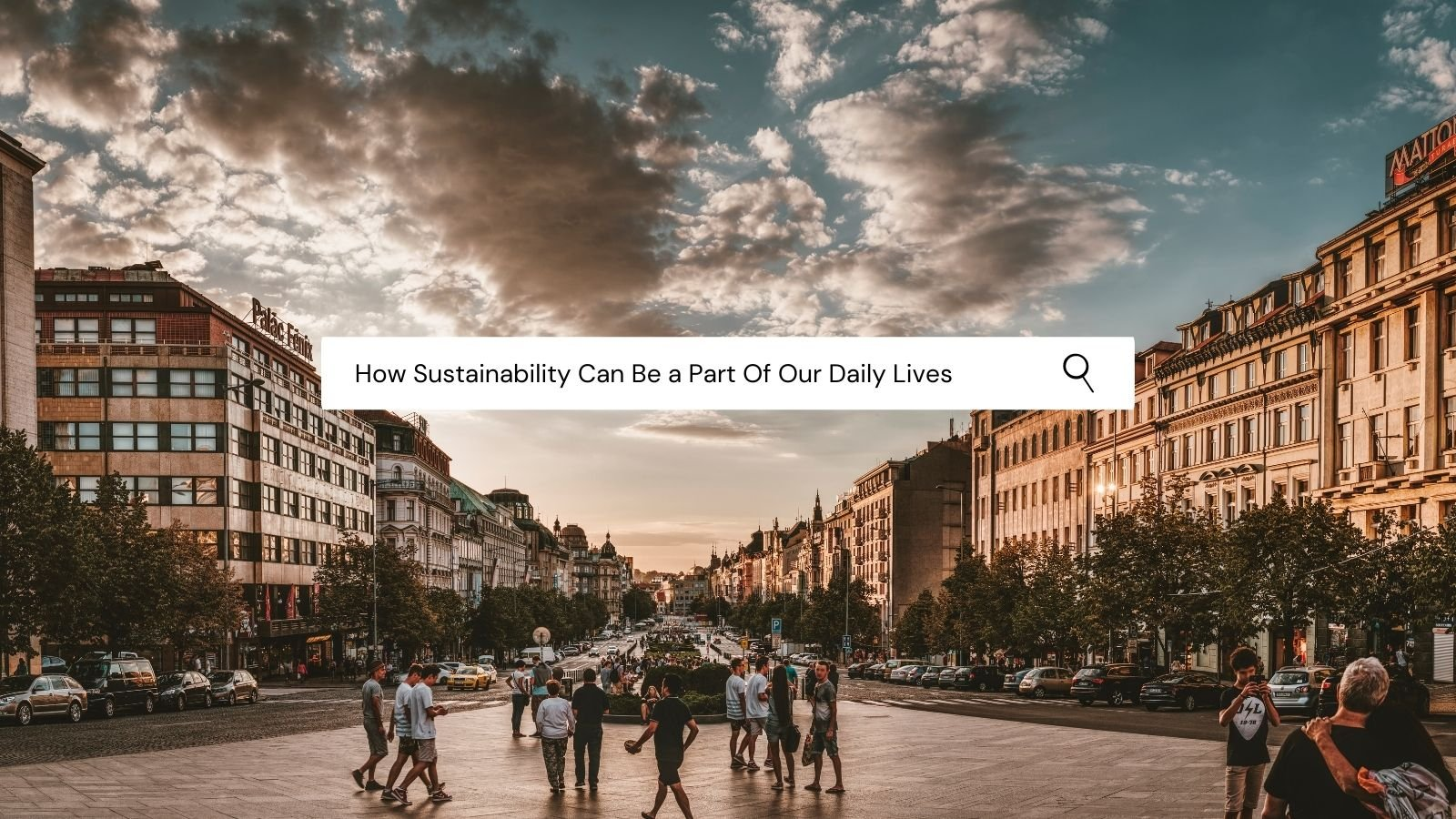 How Sustainability Can Be A Part Of Our Daily Lives