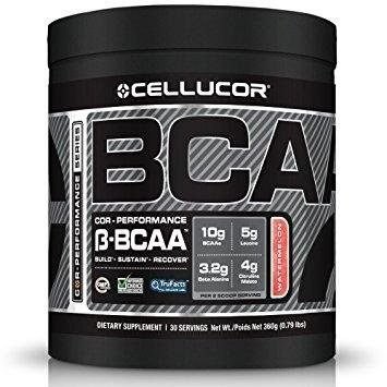 How To Aid The Muscle Building Process Of Your Body?