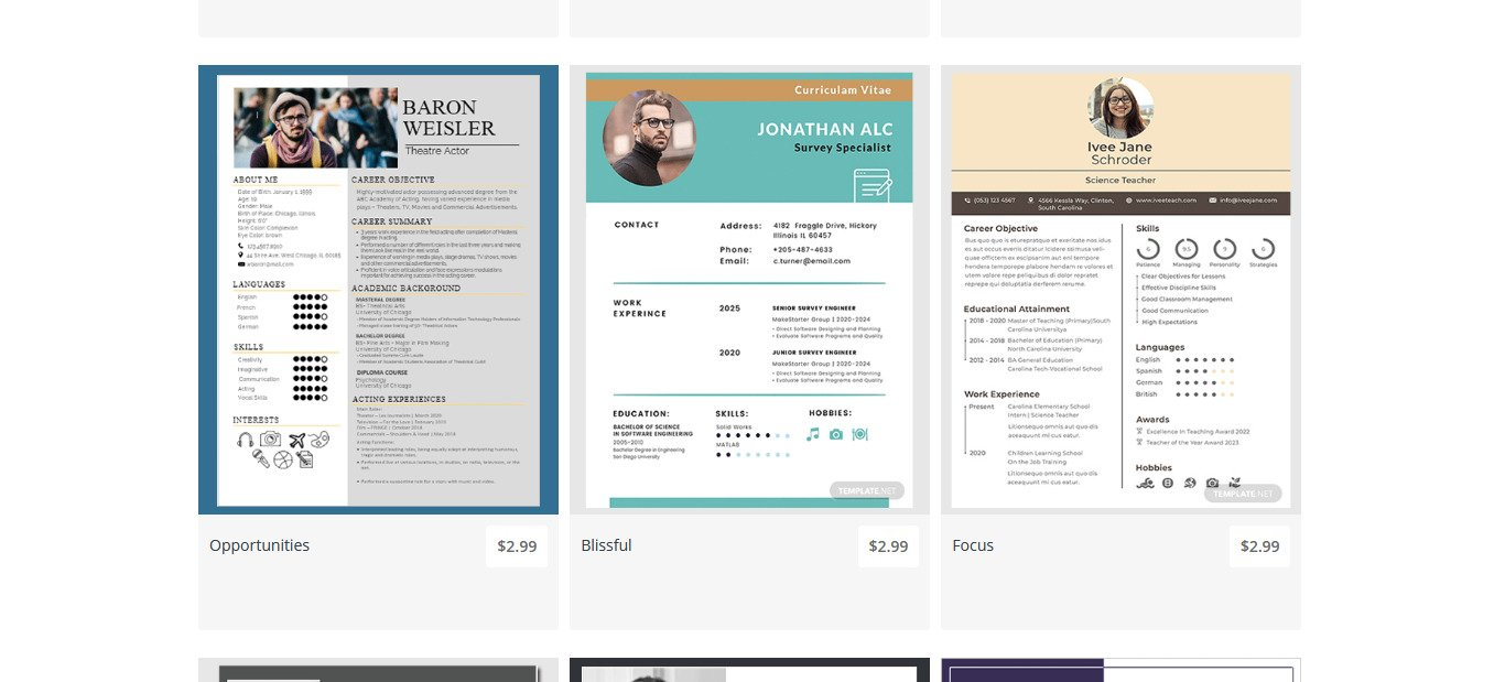 How To Choose The Correct Professional CV Template?