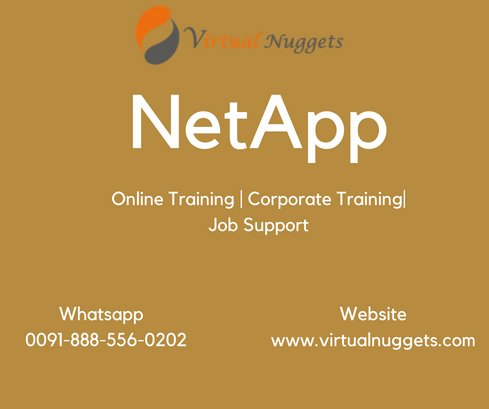 NetApp Online Training Institute