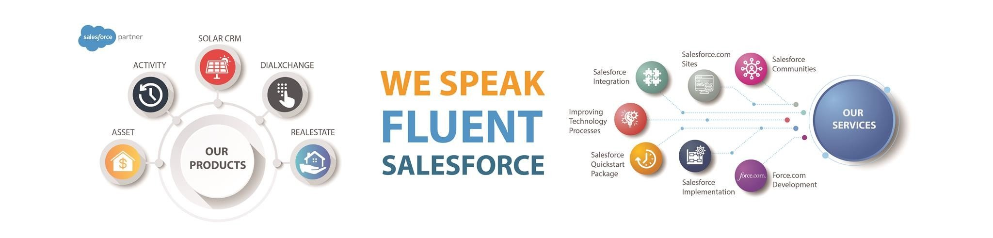 Salesforce Consultant & Developer Company USA-Saasnic