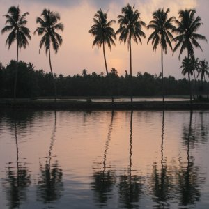 TOP 10 PLACES TO VISIT IN WAYANAD WITH FAMILY