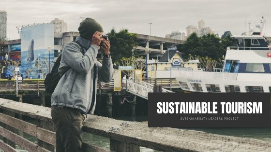 Sustainability In The Modern World