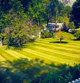 Why Should You Hire A Lawn Mowing Service?